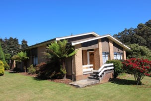 1438 Pine Road, Riana, Tas 7316