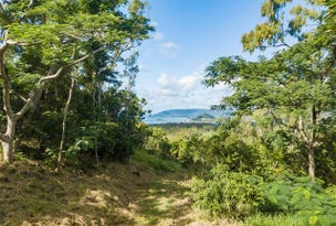 28 Black Road, Riordanvale, Qld 4800
