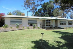 4336 Murray Valley Highway, Robinvale, Vic 3549