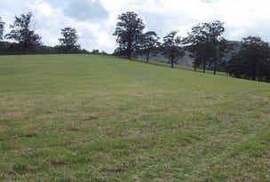 1715 Tyringham Road, Dorrigo, NSW 2453