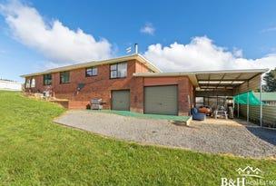 828 Ridgley Highway, Ridgley, Tas 7321