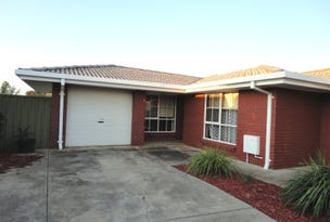 8/74 McDonnell Avenue, West Hindmarsh, SA 5007
