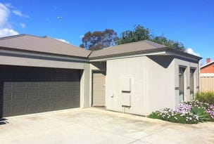 3B/13 Wilton Terrace, Torrensville, SA 5031