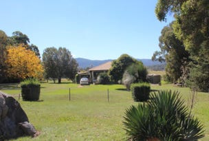 166 Homestead Road, Tenterfield, NSW 2372