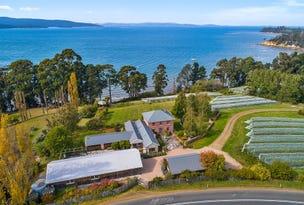 17 Jetty Road, Birchs Bay, Tas 7162