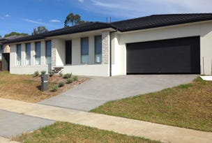 25 Pearse Crescent, Bolwarra Heights, NSW 2320