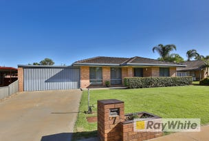 7 Hassell Court, Irymple, Vic 3498