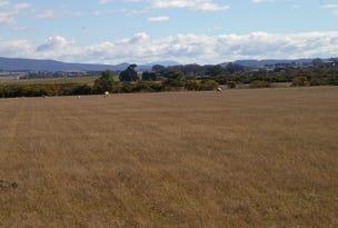 75 Clayfield Road, Bishopsbourne, Tas 7301