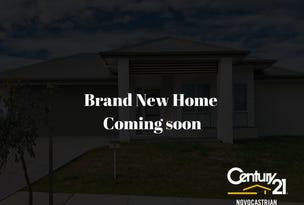 50 Triton Boulevard, North Rothbury, NSW 2335