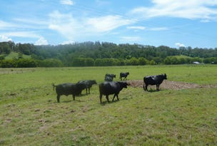 Lot 11 Afterlee Road, Kyogle, NSW 2474