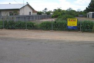 12 Bagnal Avenue, Maitland, SA 5573