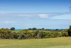 65 Long Point Road, Cape Schanck, Vic 3939