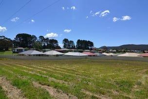Lot 110 Sidey Place, Wallerawang, NSW 2845