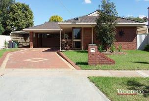22 Wilson Street, Swan Hill, Vic 3585