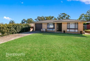 45 Bouchet Crescent, Minchinbury, NSW 2770