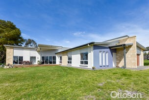 64 Haynes-Edwards Road, Naracoorte, SA 5271