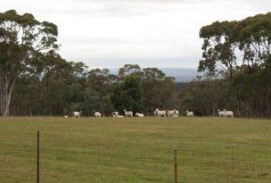 Mountain View Mount Hope Road, Coolah, NSW 2843