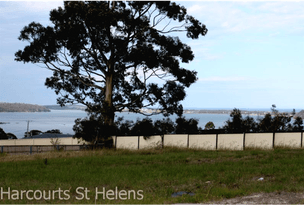 13 Cobrooga Drive, St Helens, Tas 7216