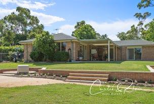 21 Sir Henry Parkes Avenue, Medowie, NSW 2318