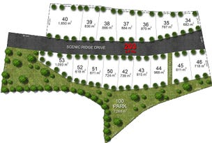 Lot 203 Scenic Ridge Drive, Cannonvale, Qld 4802
