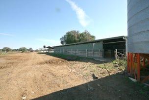 """""""Dairy"""" 492 Bamawm Road, Bamawm, Vic 3561"""