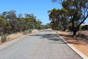 Lot 21 Muluckine Rd, Muluckine via, Muluckine, WA 6401
