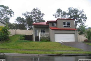 3 Aingeal Place, Oxenford, Qld 4210