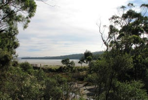 Lot 2 Sommers Bay Road, Murdunna, Tas 7178