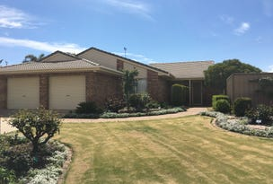 20 Meander Avenue, Renmark, SA 5341
