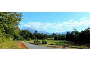Lot 37 Spurwood Road, Cow Bay, Daintree, Qld 4873