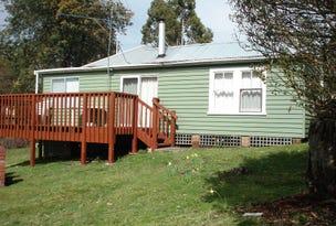 241 Bradys Lake Road, Bradys Lake, Tas 7140