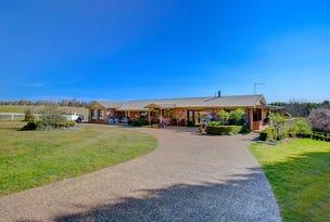 22 Walkers Rd, Moss Vale, NSW 2577