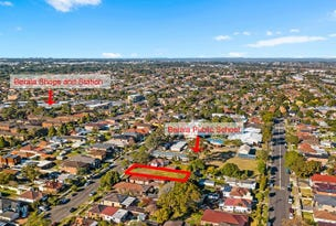 22 Auburn Road, Berala, NSW 2141