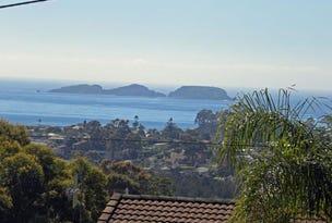 96 Vista Avenue, Catalina, NSW 2536