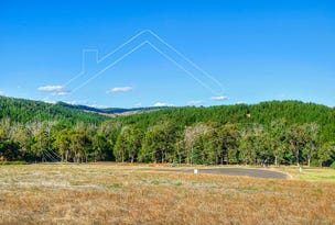 10 Lot 245 Diggers Green, Nannup, WA 6275