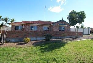 3 Rosegreen Court, Glendenning, NSW 2761