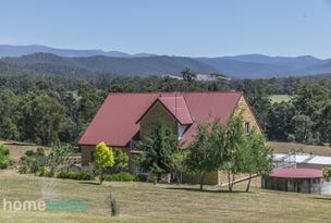 460 She Oak Road, Judbury, Tas 7109
