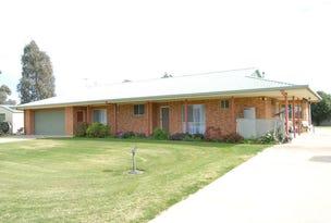 168 BARHAM ROAD, Deniliquin, NSW 2710