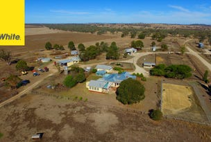 457 Abbotts Lane 'Woondooma', Delungra, Inverell, NSW 2360