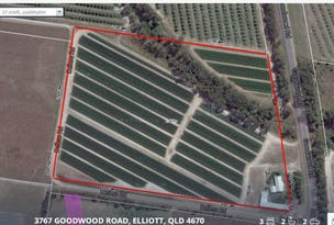 L81 Goodwood Road, Elliott, Qld 4670