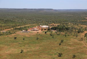 Flying Fox Station, Mataranka, NT 0852