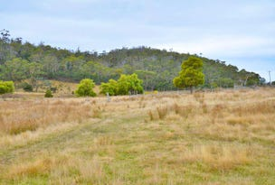 Lot 1 Bresnehans Road, Little Swanport, Tas 7190
