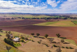 166 Settlement Bridge Road, Canowindra, NSW 2804