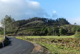 2756 Caveside Road, Mole Creek, Tas 7304