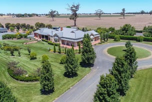49 Frances Road, Bordertown, SA 5268