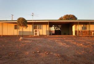 Lot 161 Government Road, Andamooka, SA 5722