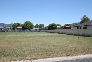 17 Rosella Street, Murrurundi, NSW 2338