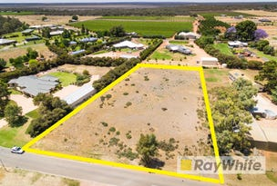 10 (lot 12) Modikerr Way, Gol Gol, NSW 2738