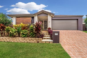 43 Cobb & Co Drive, Oxenford, Qld 4210