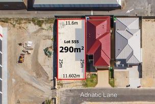 Lot 555, 25 Adriatic Lane, Stirling, WA 6021